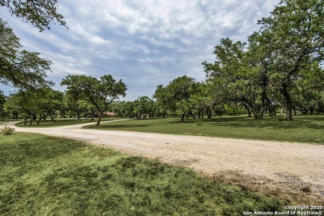 536 S School St, Boerne, TX 78006 (MLS #1479641) :: The Castillo Group