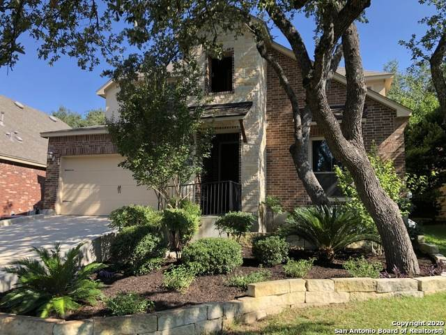 8811 Napa Lndg, Boerne, TX 78015 (MLS #1479645) :: The Castillo Group