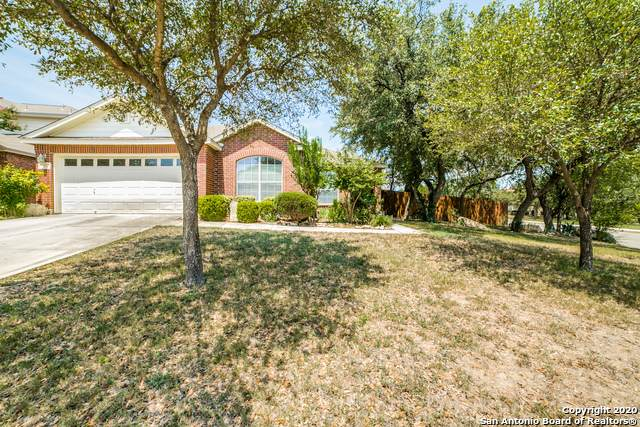 10743 Kobort Cyn, Helotes, TX 78023 (MLS #1479713) :: The Mullen Group | RE/MAX Access