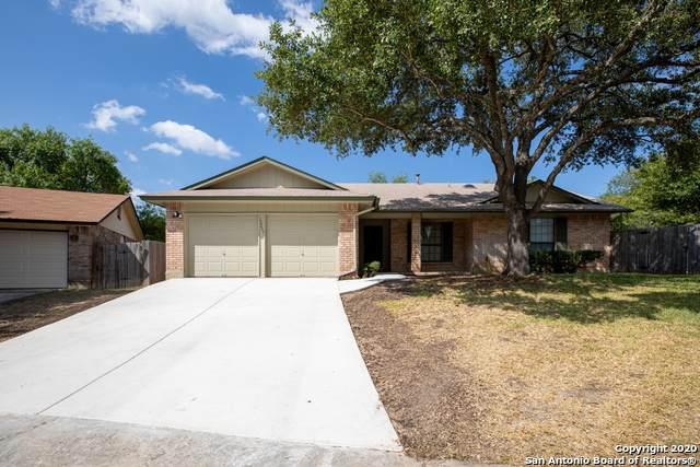 12203 Mint St, San Antonio, TX 78247 (MLS #1479802) :: The Castillo Group