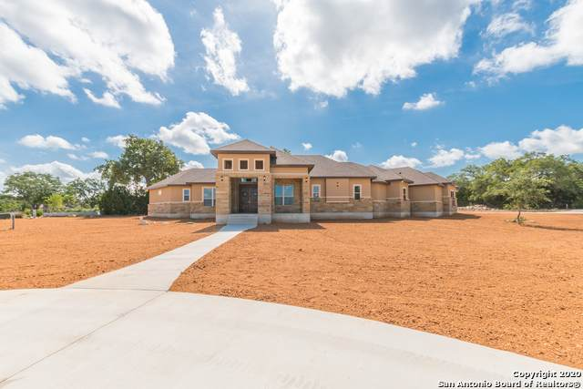 451 Curvatura, New Braunfels, TX 78132 (MLS #1479983) :: Santos and Sandberg