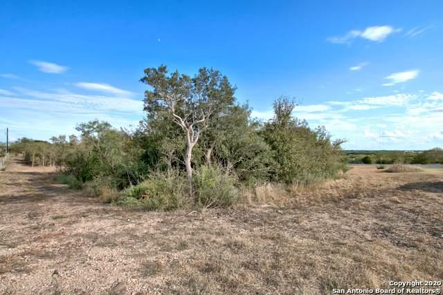 2909 Fm 465, Marion, TX 78124 (MLS #1480074) :: The Castillo Group