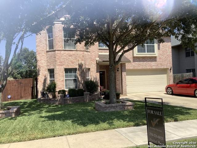 168 Springtree Hollow, Cibolo, TX 78108 (MLS #1480117) :: REsource Realty