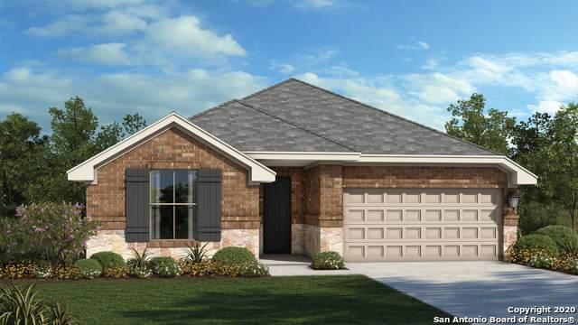 213 Emerald Garden Rd, San Marcos, TX 78666 (MLS #1480386) :: The Heyl Group at Keller Williams