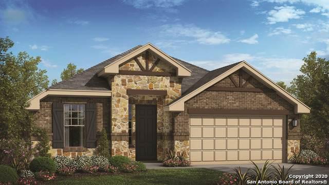 224 Emerald Garden Rd, San Marcos, TX 78666 (MLS #1480462) :: The Heyl Group at Keller Williams