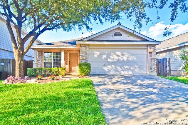 11039 Connemara Cove, San Antonio, TX 78254 (MLS #1480463) :: EXP Realty