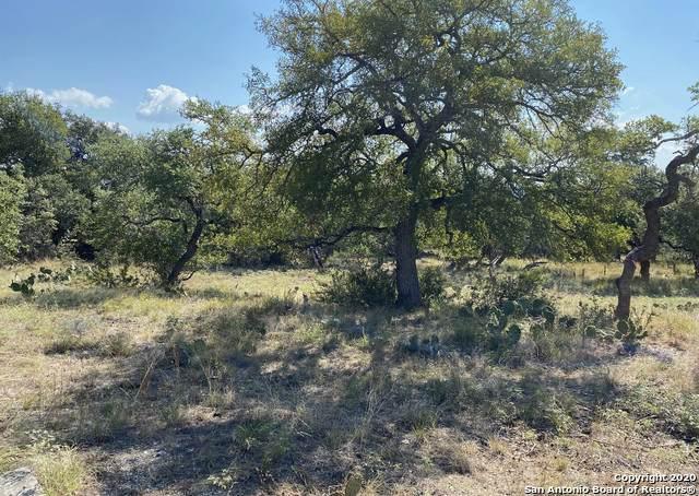 1556 Vintage Way, New Braunfels, TX 78132 (MLS #1480489) :: ForSaleSanAntonioHomes.com