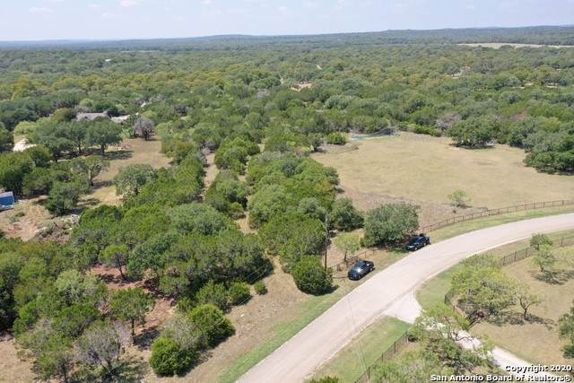384 Georg Oaks, Bulverde, TX 78163 (MLS #1480506) :: Santos and Sandberg