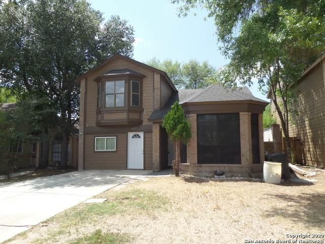 4137 Sunrise Cove Dr., San Antonio, TX 78244 (MLS #1480530) :: The Castillo Group