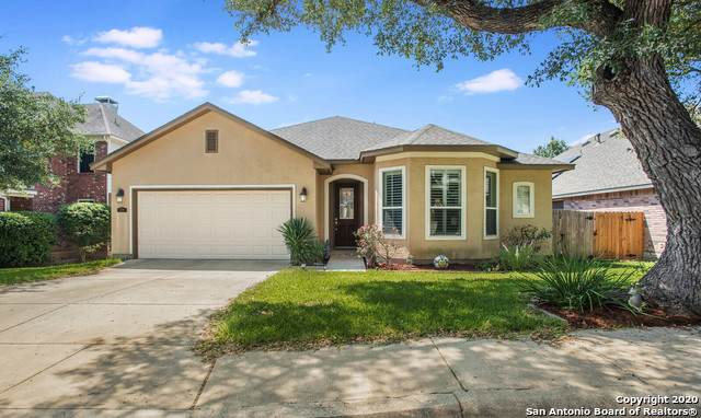 2718 Trinity Ridge, San Antonio, TX 78261 (MLS #1480592) :: The Real Estate Jesus Team