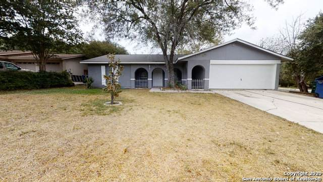12302 Alexandria Dr, San Antonio, TX 78233 (MLS #1480801) :: The Castillo Group