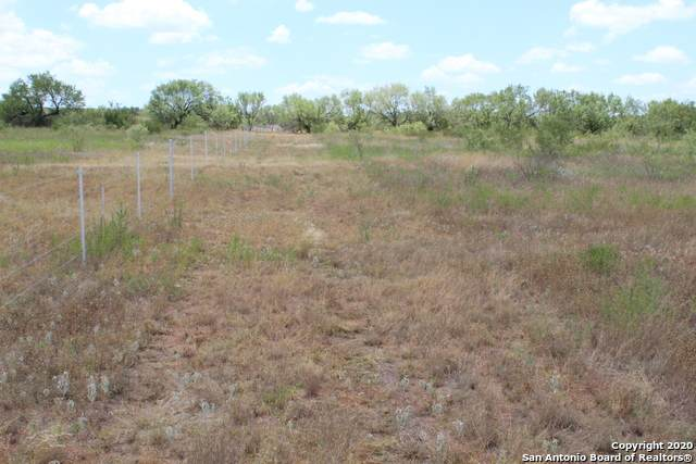 1455 County Road 1670, Moore, TX 78057 (MLS #1480858) :: Neal & Neal Team