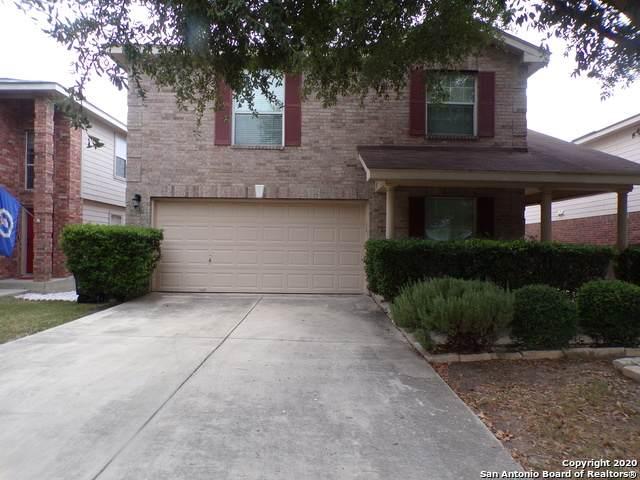 691 Rattler Bluff, San Antonio, TX 78251 (MLS #1481041) :: The Castillo Group