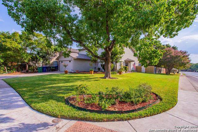 3302 Coral Grove Dr, San Antonio, TX 78247 (MLS #1481106) :: The Mullen Group | RE/MAX Access