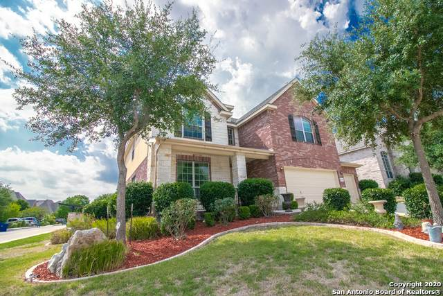 23209 Bison Cyn, San Antonio, TX 78261 (MLS #1481383) :: The Lugo Group