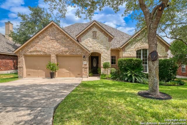 430 Sand Ash Trail, San Antonio, TX 78256 (MLS #1481559) :: The Real Estate Jesus Team