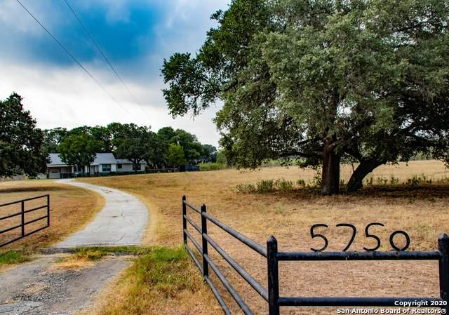 5750 Smith Rd, Von Ormy, TX 78073 (#1481757) :: The Perry Henderson Group at Berkshire Hathaway Texas Realty