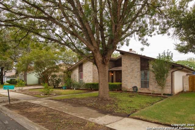 117 De Vaca, Universal City, TX 78148 (MLS #1481823) :: The Heyl Group at Keller Williams