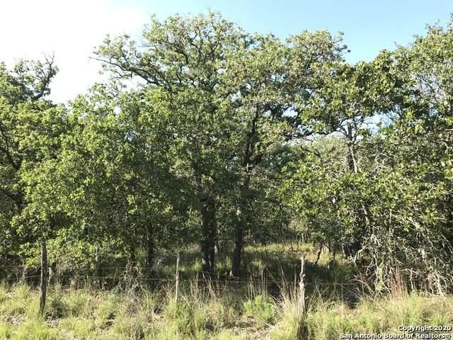 000 Turkey Tree Trail, Seguin, TX 78155 (MLS #1481832) :: EXP Realty