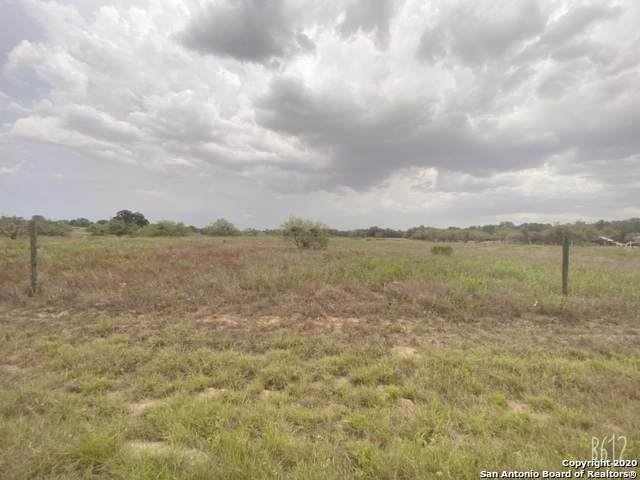 160 Clear Lake Dr, Poteet, TX 78065 (MLS #1481855) :: REsource Realty