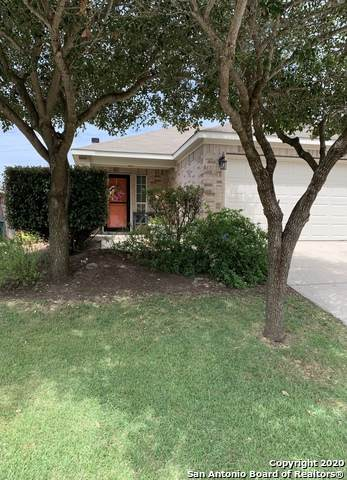 6431 Ithaca Forest, San Antonio, TX 78239 (MLS #1482015) :: The Mullen Group | RE/MAX Access
