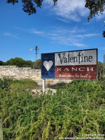 110 Private Road 1702, Helotes, TX 78023 (MLS #1482383) :: REsource Realty