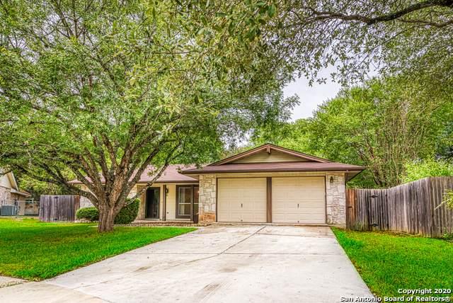 12207 Melon St, San Antonio, TX 78247 (MLS #1482641) :: The Castillo Group