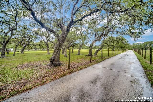 303 Ammann Rd, Boerne, TX 78015 (MLS #1482667) :: Concierge Realty of SA