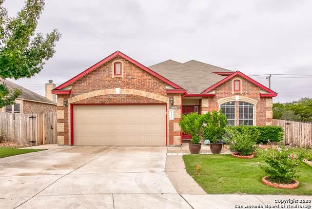 25223 Terlingua Bend, San Antonio, TX 78261 (MLS #1482732) :: Maverick
