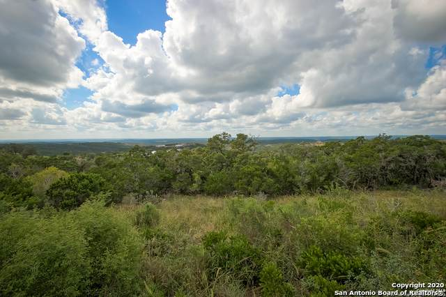 PR 2775 Lot 18, Mico, TX 78056 (MLS #1482737) :: The Glover Homes & Land Group
