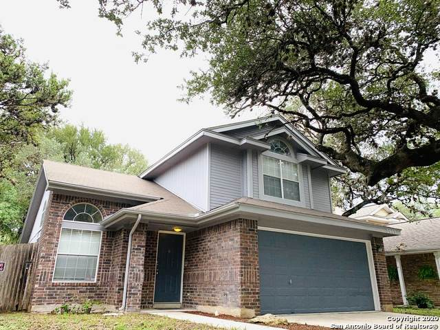 7903 Quail Sky, San Antonio, TX 78250 (MLS #1482820) :: The Castillo Group