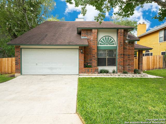 16919 Vista Forest Dr, San Antonio, TX 78247 (MLS #1483050) :: The Castillo Group