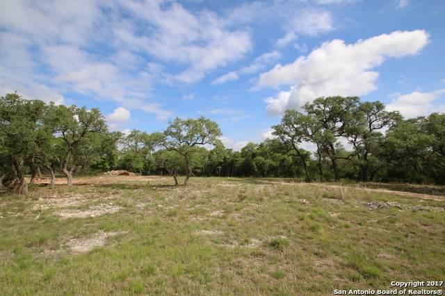 2360 Comal Spgs, Canyon Lake, TX 78133 (MLS #1483105) :: The Castillo Group