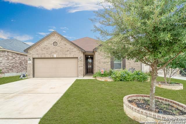 20515 Roche Oak, San Antonio, TX 78259 (MLS #1483175) :: The Real Estate Jesus Team