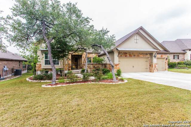 10407 Springcroft Ct, Helotes, TX 78023 (#1483263) :: The Perry Henderson Group at Berkshire Hathaway Texas Realty
