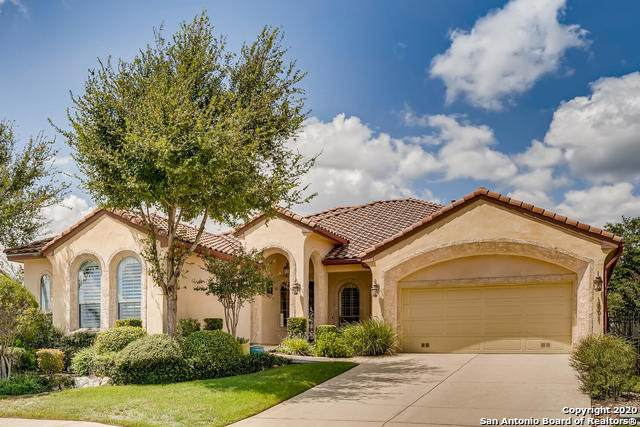 18611 Castellani, San Antonio, TX 78258 (MLS #1483505) :: EXP Realty
