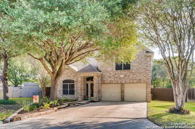 8510 Quail Sun, San Antonio, TX 78250 (MLS #1483815) :: The Castillo Group
