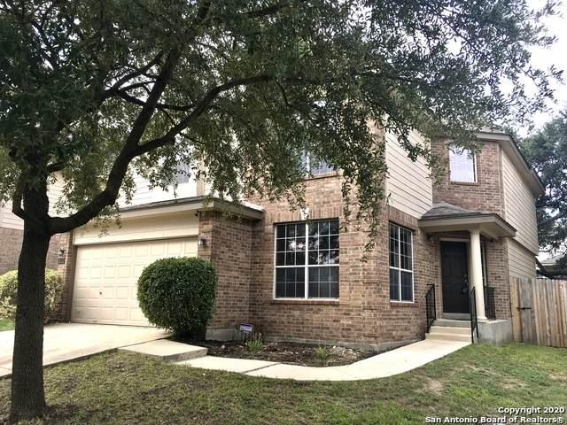 10423 Mustang Walk, San Antonio, TX 78254 (MLS #1483935) :: Concierge Realty of SA