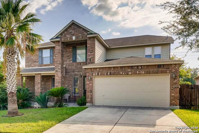 145 Springtree Gate, Cibolo, TX 78108 (MLS #1483997) :: The Castillo Group
