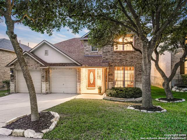 1751 Heavens Peak, San Antonio, TX 78258 (MLS #1484045) :: The Glover Homes & Land Group