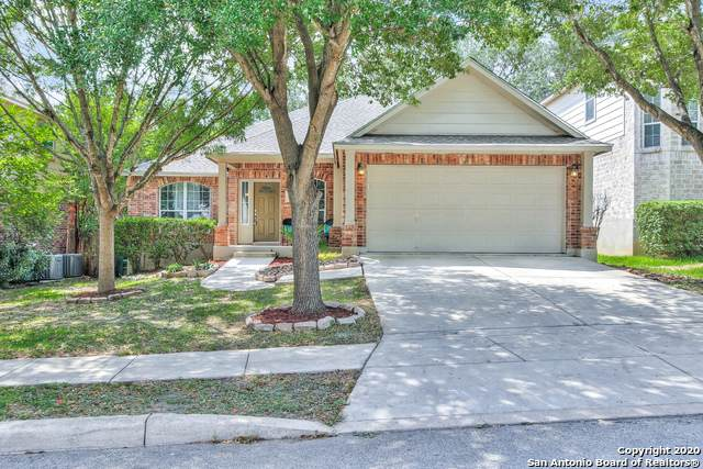 46 Atwell Park, San Antonio, TX 78254 (MLS #1484108) :: Carolina Garcia Real Estate Group