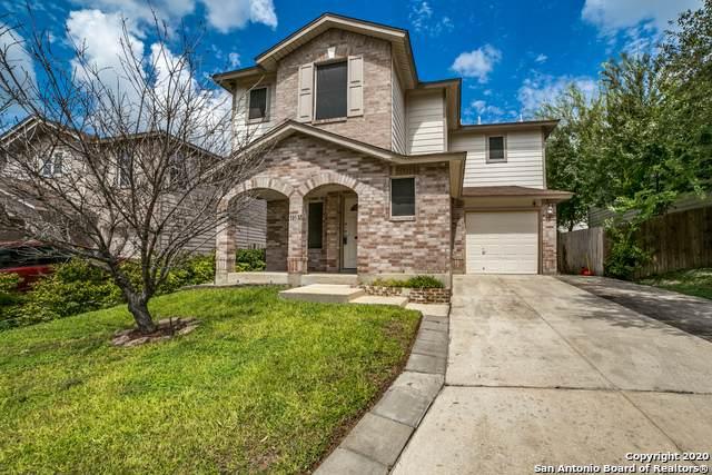 10137 Figaro Canyon, San Antonio, TX 78251 (MLS #1484109) :: Concierge Realty of SA