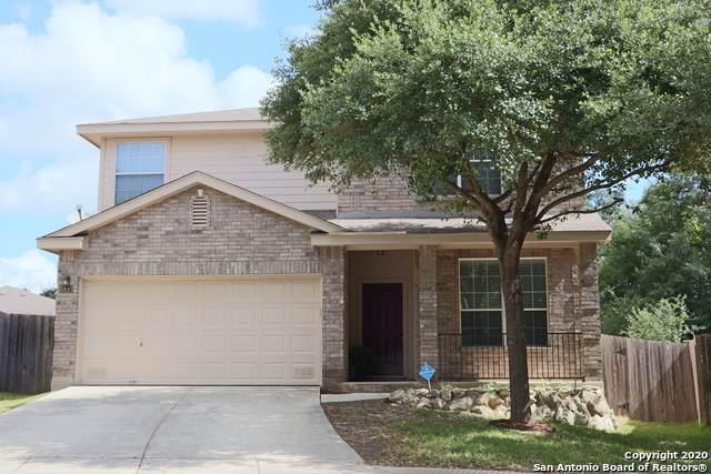 5443 Excello Path, San Antonio, TX 78247 (MLS #1484148) :: The Heyl Group at Keller Williams