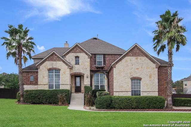 10 Gazelle Field, San Antonio, TX 78258 (MLS #1484324) :: The Real Estate Jesus Team