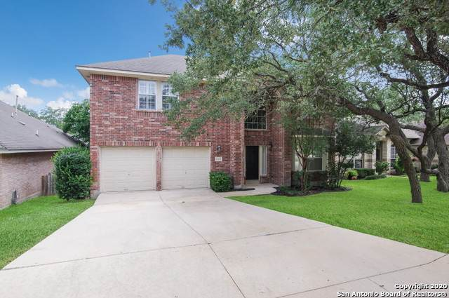 25218 Battle Lk, San Antonio, TX 78260 (MLS #1484359) :: The Real Estate Jesus Team
