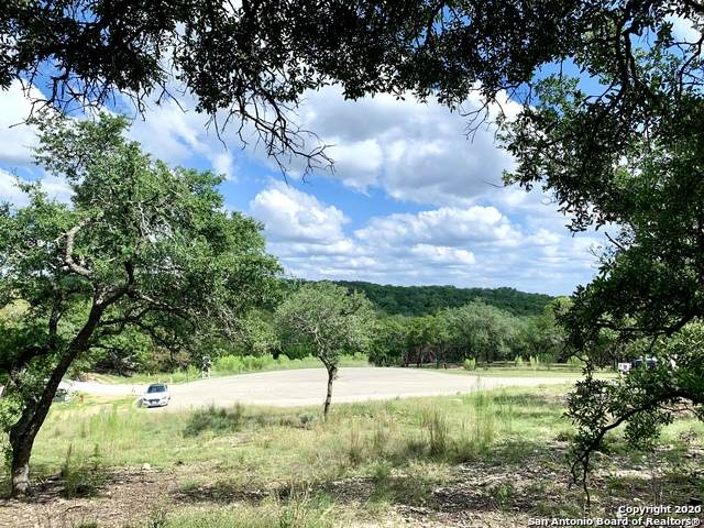 20310 Bobwhite Run, San Antonio, TX 78256 (MLS #1484404) :: The Glover Homes & Land Group