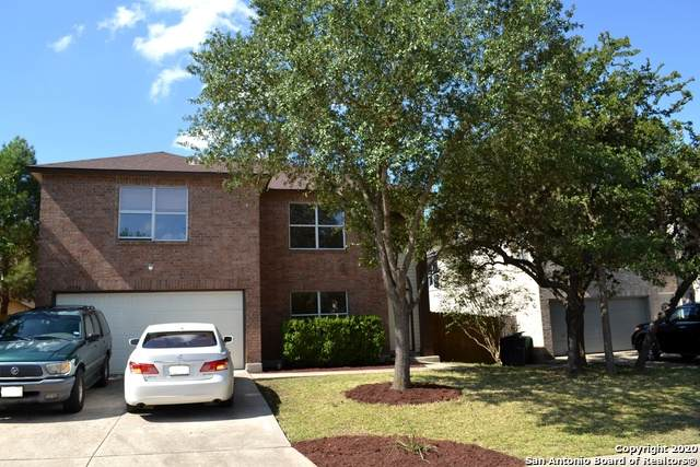 10334 Dinner Crk, San Antonio, TX 78245 (MLS #1484560) :: The Gradiz Group