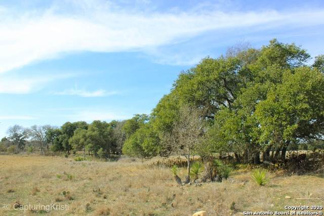 795 Lipan Apache, Blanco, TX 78606 (MLS #1484629) :: BHGRE HomeCity San Antonio