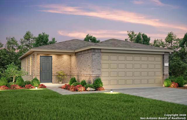 341 Autumn Blaze, New Braunfels, TX 78130 (MLS #1484716) :: The Castillo Group