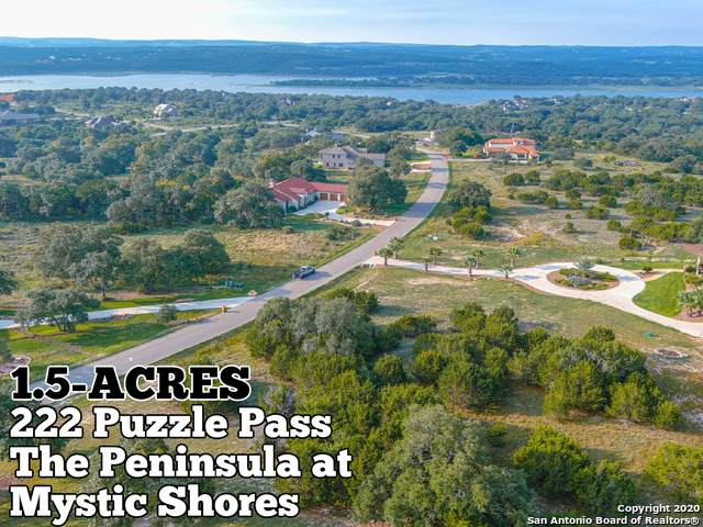 222 Puzzle Pass, Spring Branch, TX 78070 (MLS #1484749) :: The Heyl Group at Keller Williams